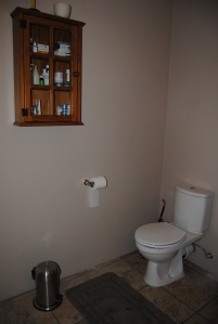 New loo and fittings