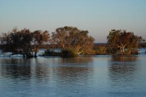 Zambia May 2014 Zoom 247