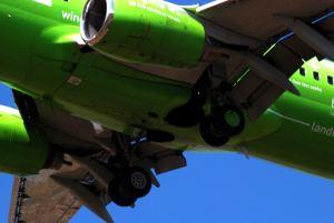 Planes  May 2015 064